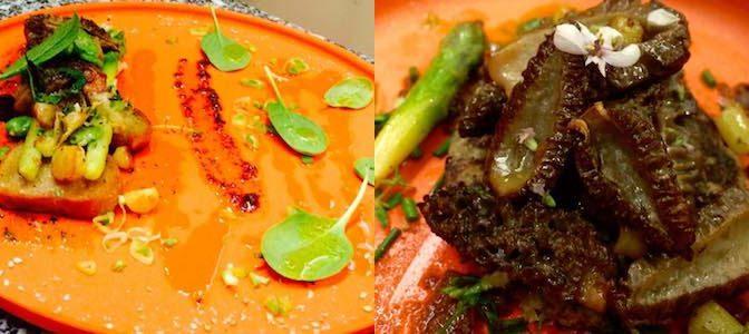 restaurant-vegetarien-carcassonne-comteroger4 copie