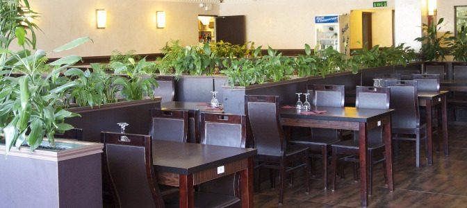 restaurant-vegetarien-sakura du paradis-chartres3