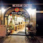 Mexican Cactus – Besançon